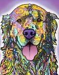 Pop Art Dogs, Cats ect
