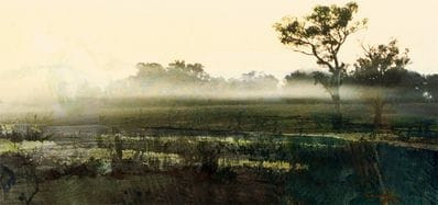 Misty Morning - Jan Neil