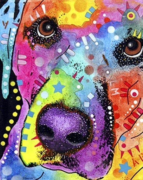 Thumbnail Labrador Dog 115412