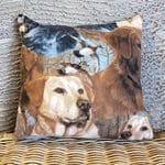 Cushion #0135
