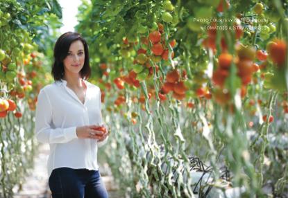 Ricardoes Tomatoes
