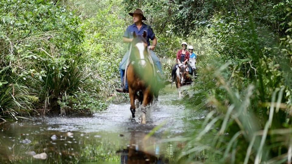 Bellrowan Valley Horseriding