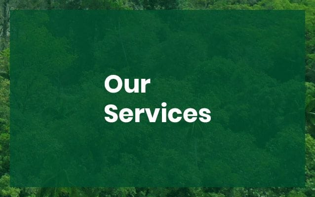 Eco Care Engineering PNG Services | Environmental Consulting Papua New Guinea