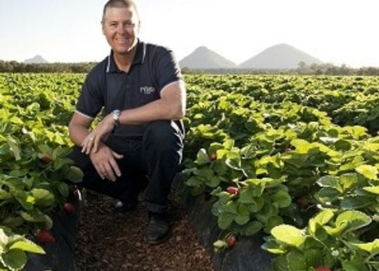 Confidence in crisis: Overcoming collateral damage after strawberry needle disaster