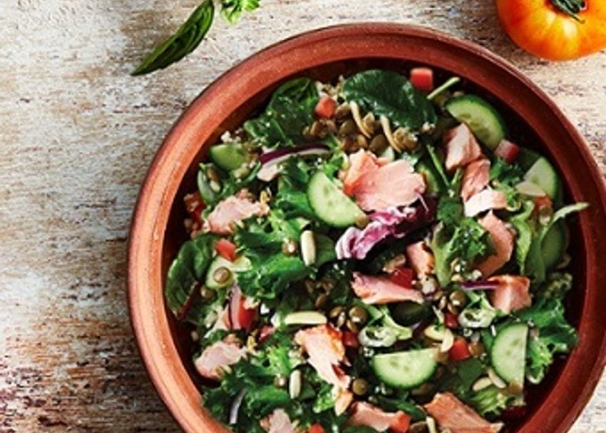 SumoSalad back in the ring with plans for THR1VE merger