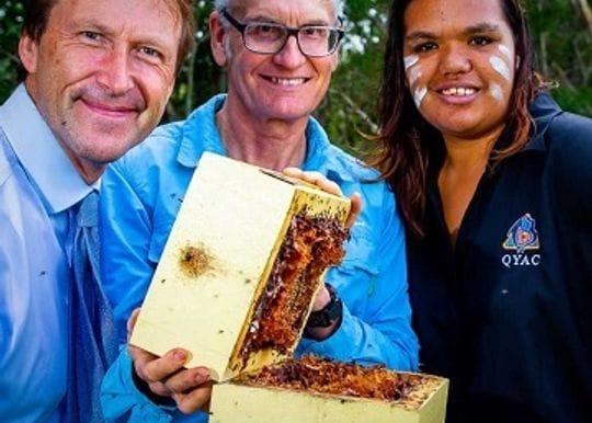 Indigenous honey enterprise abuzz after Star Entertainment deal