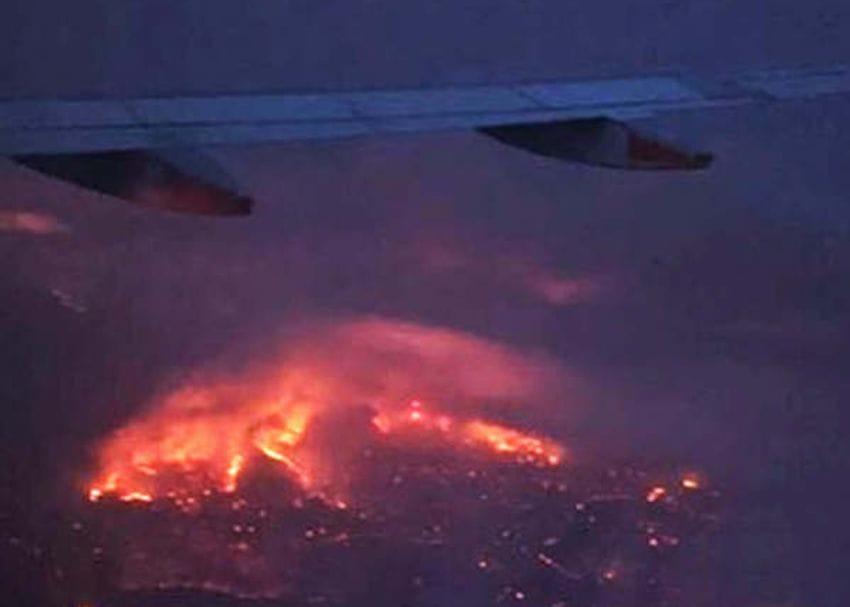 Australian Vintage confirms extent of damage from SA bushfires