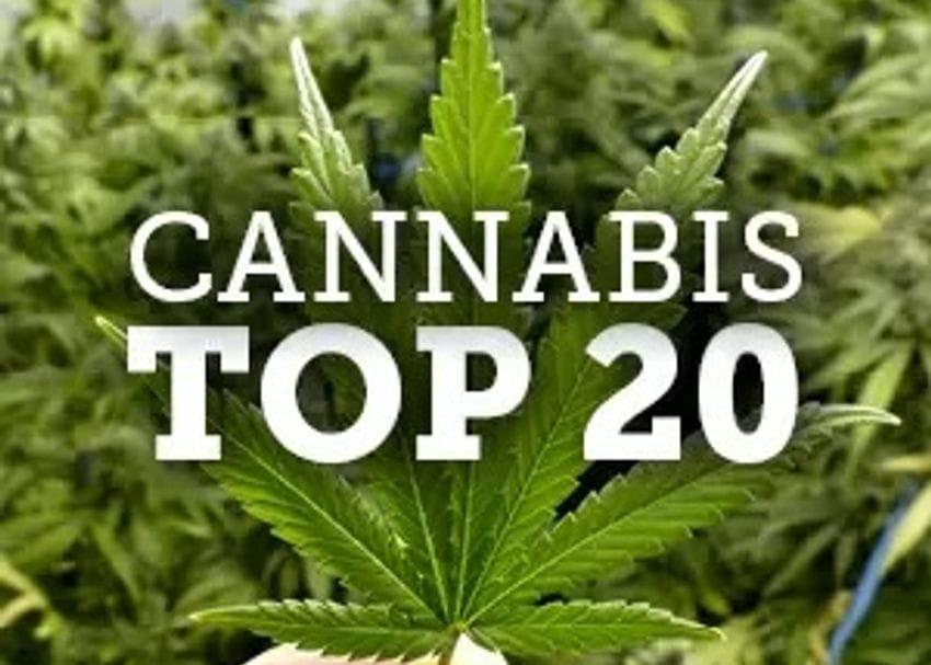 Australia's top 20 cannabis companies 2019