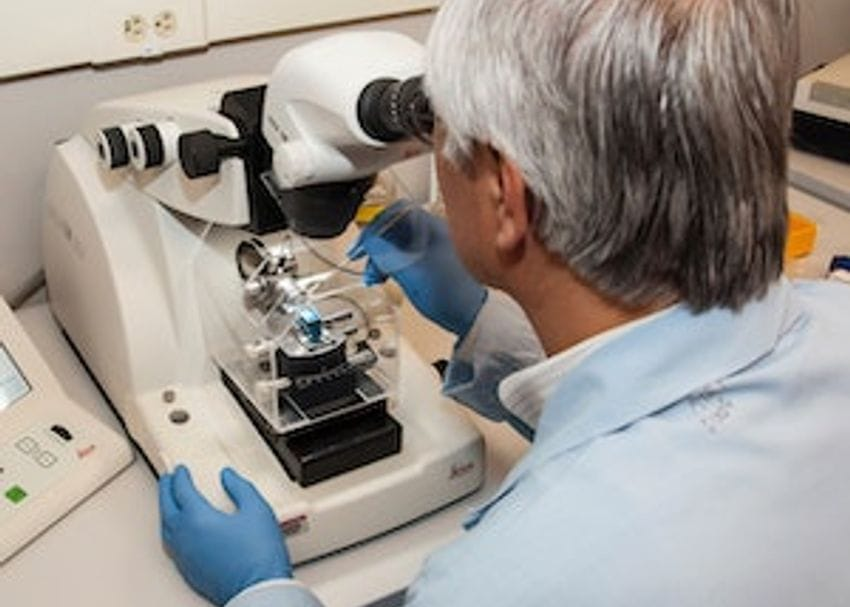 Human trials for UQ's COVID-19 vaccine commence