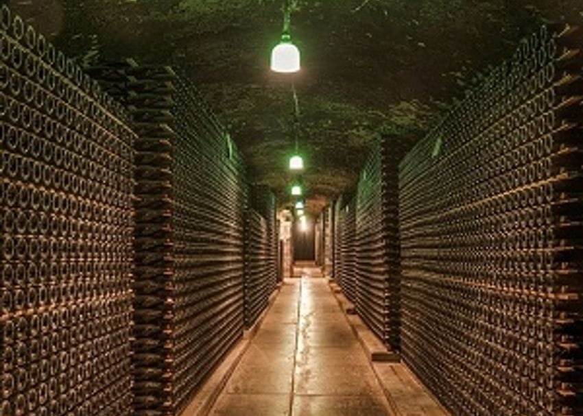 Treasury Wine shares fall as China opens investigation alleging Australian dumping