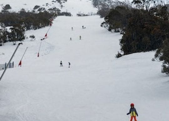 The Rivers Restaurant in Thredbo closed after serial COVID-19 safety breaches