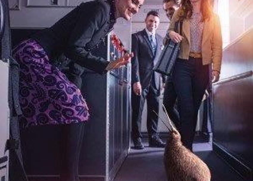 Australia to welcome Kiwis when travel bubble opens on 16 October