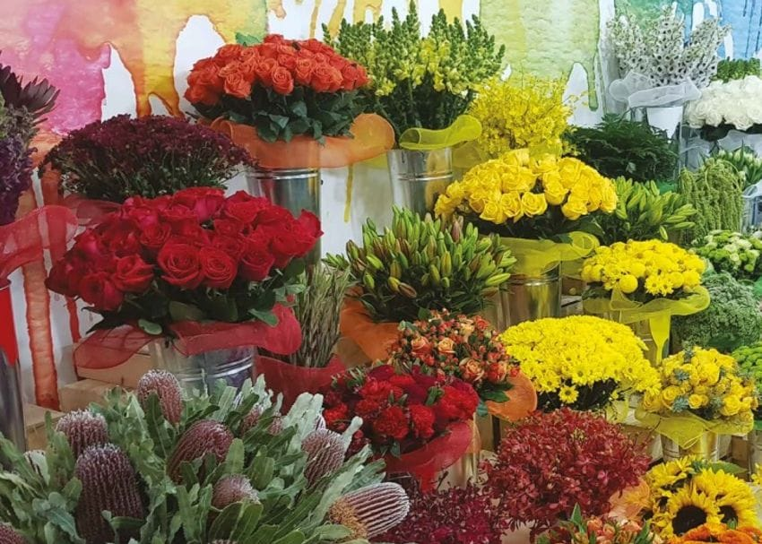 Australia's largest floral wholesaler Lynch Group buds on the ASX
