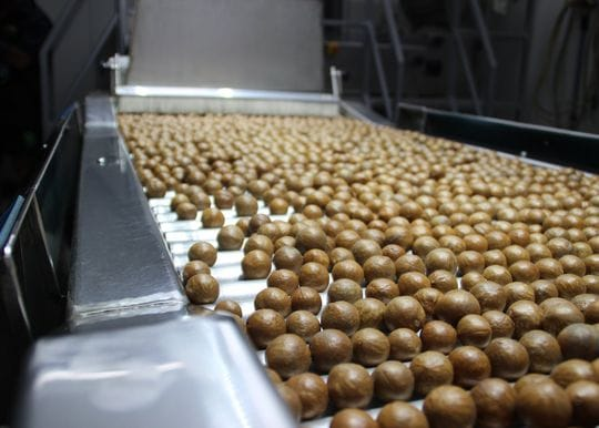 Marquis Macadamias to give Bundaberg factory a $13.3m facelift
