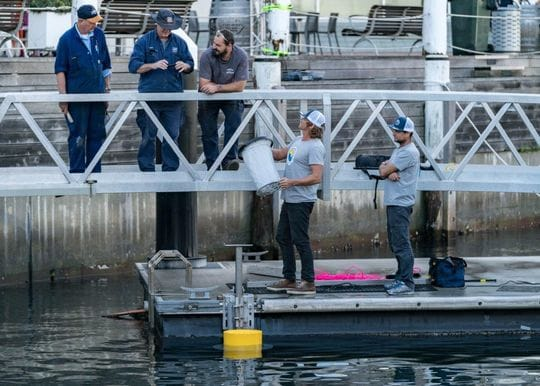 Seabin to raise another $1.2m for 'Smarter Cities - Cleaner Oceans' global roll-out