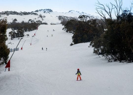 Huge number of Aussies expected to hit the slopes this year