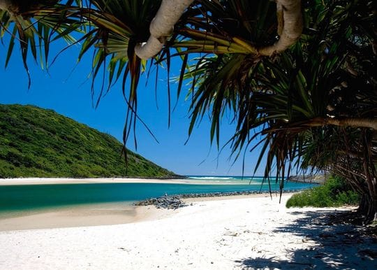 QLD Deputy Premier calls for local staycations as tourism operators hit by border closures