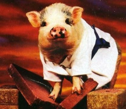 Happy Lunar NY 2019 (Year of the Pig) - 5 February