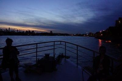Night cruise in Brisbane