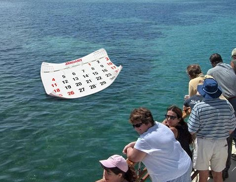 Brisbane Cruise Timetable