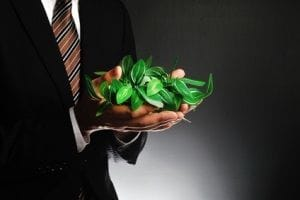 Go green for 2015: A guide to a more environmentally friendly office