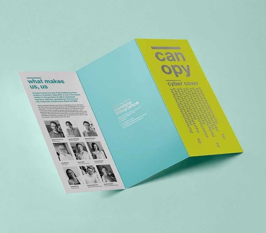 Brochure printing, flyer printing