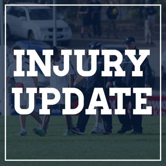 Injury Update - Round 2