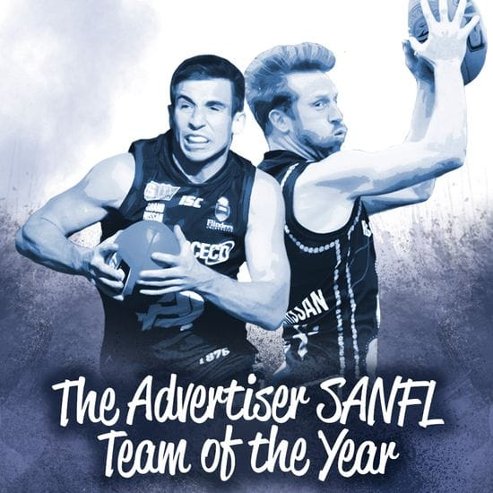 Joel Cross and Nick Liddle named in The 2017 Advertiser SANFL Team of the Year