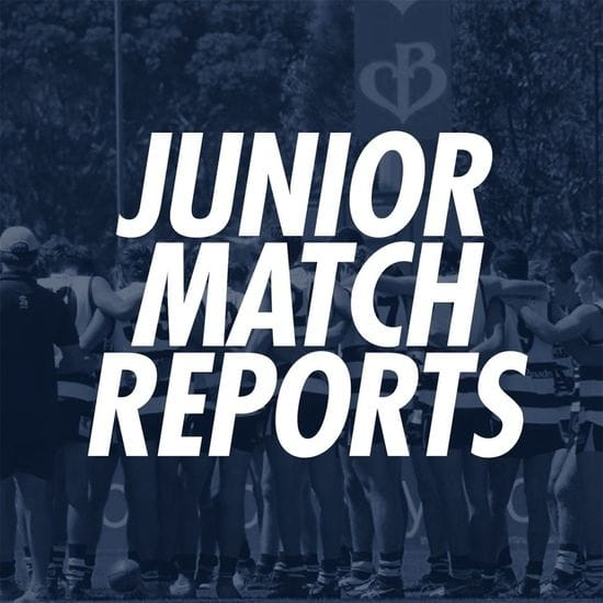 Junior Match Reports - South Adelaide vs Eagles