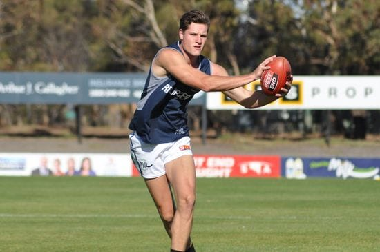 Hayden McLean picked up by Sydney Swans