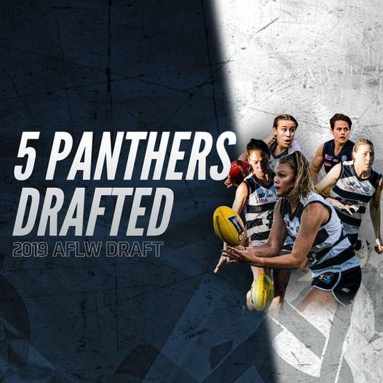 Five Panthers taken in AFLW Draft