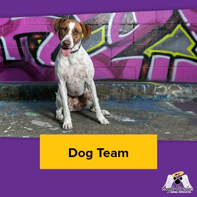 Dog Team Members