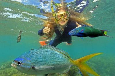 Snorkel the beautiful fringing coral reef of Bali Hai.