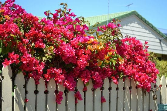 How to prepare for the Spring property season