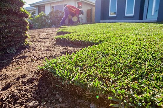 What you need to know before laying Turf.