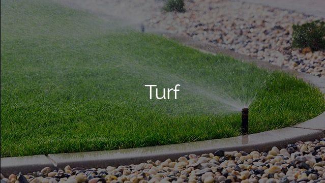burleigh garden supplies | Turf