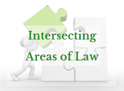 Intersecting Areas of Law CPD Series