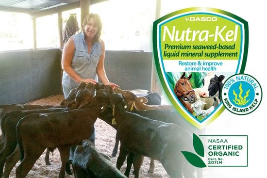 Vital addition for your calf-rearing toolbox
