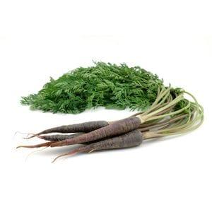 Carrots - Purple