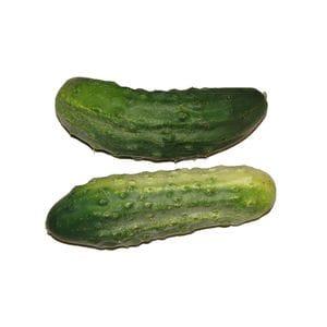 Cucumber - Qukes
