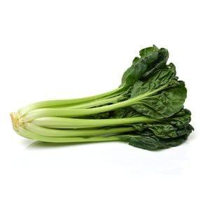 Lettuce - Tatsoi