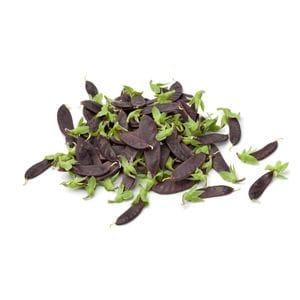 Peas - Snow Purple