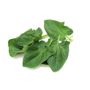 Spinach - English