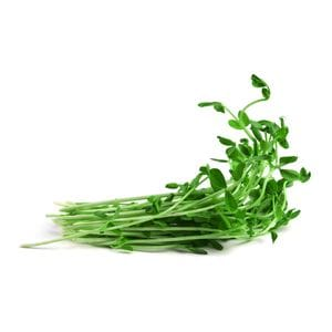 Sprouts - Snowpea