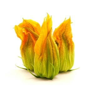 Zucchini - Flower