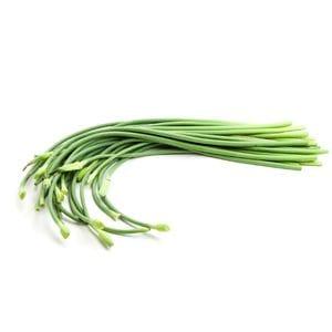 Garlic - Scapes