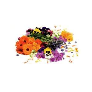 Flowers Edible