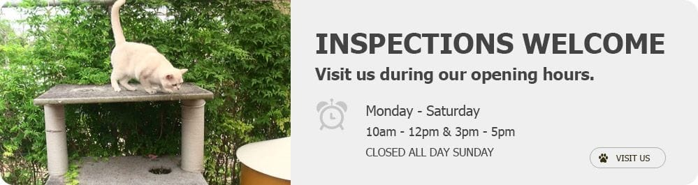 Inspect Our Kennels - come see for yourself the excellent standard of care we give your pets.