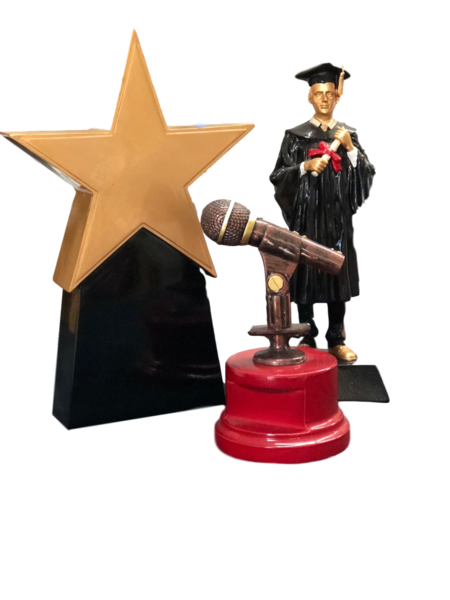 School Awards, Trophies, Medals, Badges, Honour boards, Plaques