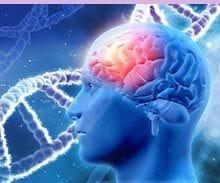 Hygeia Clinic Brain optimisation